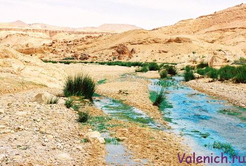 ручей в пустыне